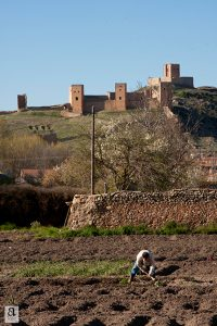 El Regao vegetable gardens. Molina de Aragón, Spain. Photo by Ángela Coronel